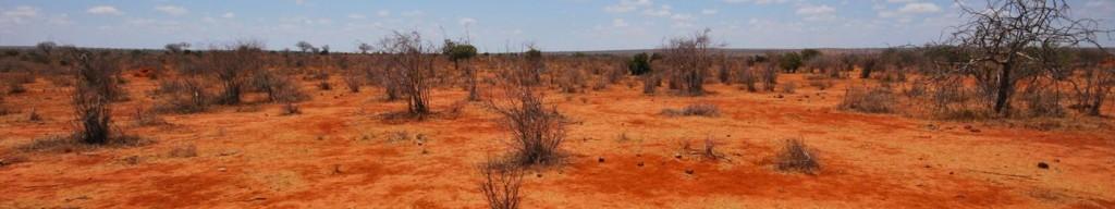 kudu-camp-tsavo-est_12